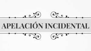 MODELO DE RECURSO DE APELACIÓN INCIDENTAL PENAL
