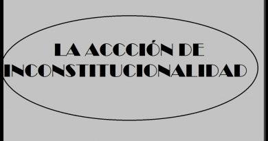 MODELO DE ACCION DE INCONSTITUCIONALIDAD BOLIVIA